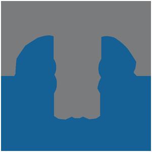 BMS Holdings